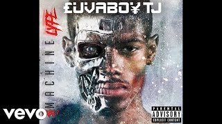 Luvaboy TJ ft. Chris Brown & Ray J - Who You Came With (Official Audio)