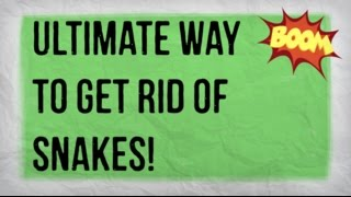How to Get Rid of Snakes in Your Yard | Getting Rid of a Snake in the Garden Naturally