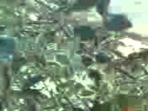 Le nettoyage de lorganisme selon les parasites par la semence du lin