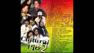 DJ Kenny - Cultural Hitz Vol. 2 (2008 Mix CD Preview)