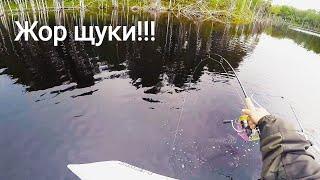 Где самая хорошая рыбалка в карелии