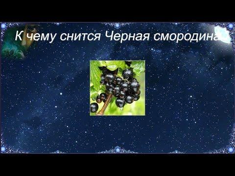 К чему снится Черная смородина (Сонник)