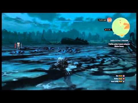 The Witcher 3: Wild Hunt Infinite XP With God Mode - Chort