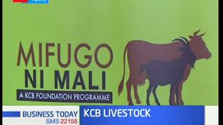KCB Foundation has partnered with four counties to support Livestock sector
