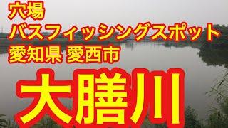 大膳川穴場バスフィッシングスポット愛知県愛西市ブラックバス