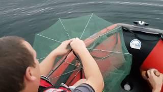 Когда можно ловить креветку в черном море
