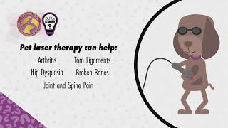 Did You Know – Laser Therapy
