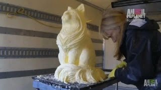 A Cat Sculpture Made out of Butter