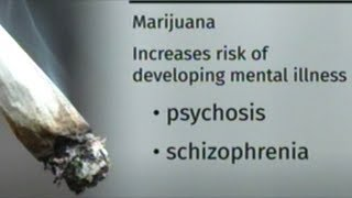 """Marijuana Increases Risk Of Mental Illness!"" Canadian News Day After Cannabis Legalization Passes"