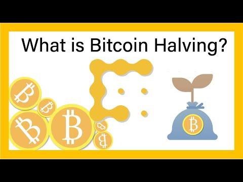 Bitcoin kodo sistemos apžvalga