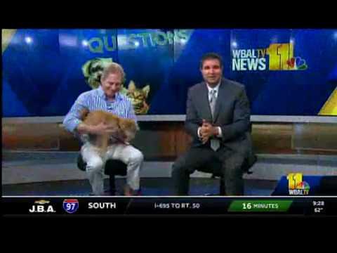 WBAL Pet Segment 5/12/18