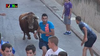 preview picture of video '2 Toros Fiestas Barrio Sant Joan 2014 - Nules (Castellon) Bous al Carrer [Toros FJGNtv]'