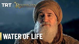 resurrection ertugrul - 免费在线视频最佳电影电视节目 - Viveos Net