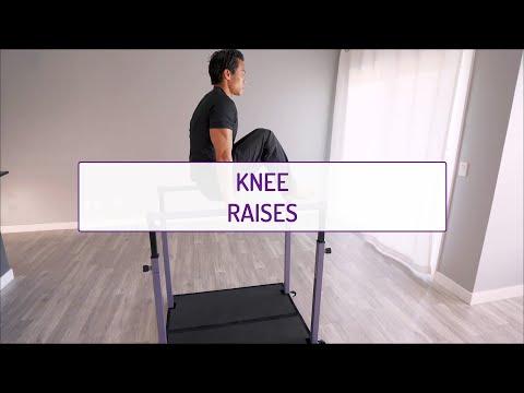 Knee Raises (on the Bars)