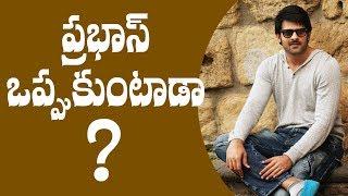 Will Prabhas agree to do it ? || #Prabhas || #Baahubali2 actor Prabhas