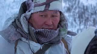 Горная охота на снежного барана