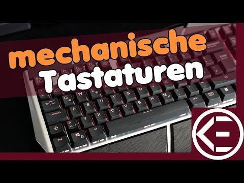 PERFEKTE GAMING TASTATUR?! | So findest du sie! | Alles über mechanische Tastaturen