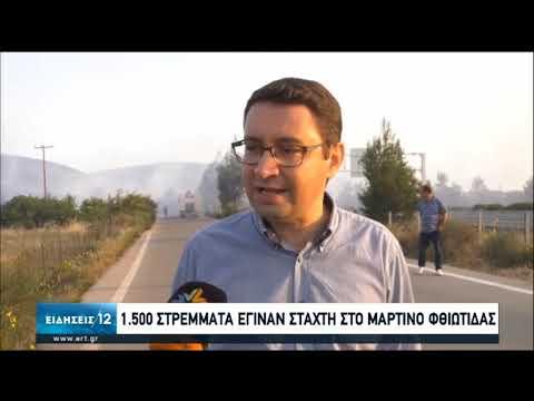 Μαρτίνο: Πευκοδάσος αφάνισε η πυρκαγιά   20/06/2020   ΕΡΤ