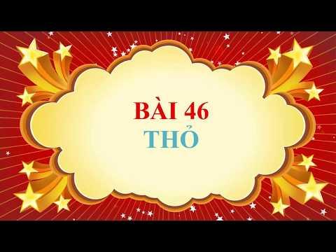 SINH 7- BÀI 46. THỎ ( video clip)