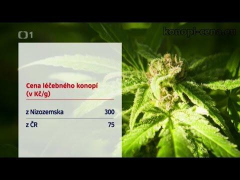 Koupit Prostamol v Jaroslavli