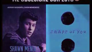 Shaw Mendes feat. Ed Sheeran (Treat You Better and Shape Of You)