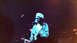 peter tosh – downpresser man (live in toulouse france 1983)