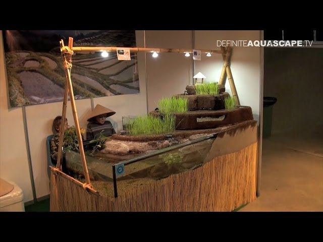 Aquascaping - Aquarium ideas from ZooBotanica 2013 pt.7