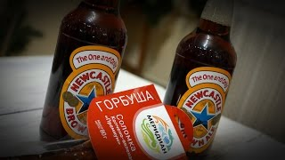 ТБП: Newcastle Brown Ale и горбуша (Меридиан)