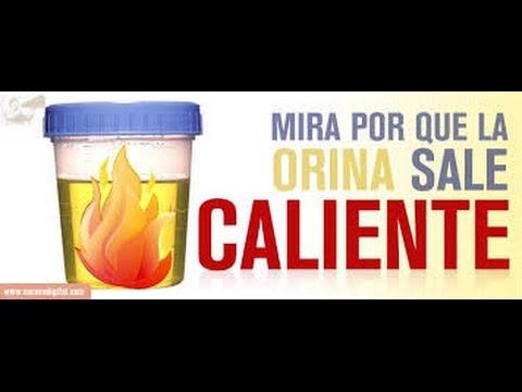 Recept za bučnih semen za zdravljenje prostate