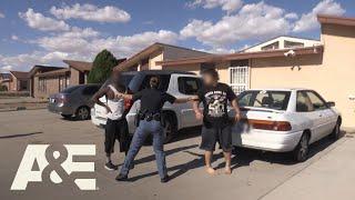 Live PD: Street Fighting (Season 3) | A&E