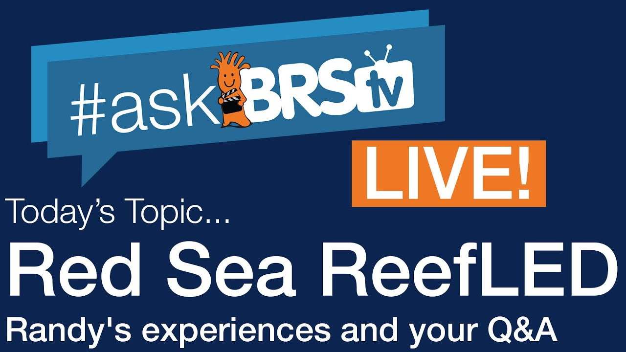 Randy's experiences and your Q&A of the Red Sea ReefLED - #AskBRStv Live