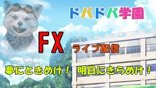【FXライブ】令和元年6月19日水曜日ライブ/FOMC