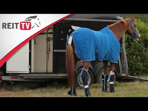 REITTV-Tipps: Transportgamaschen anlegen