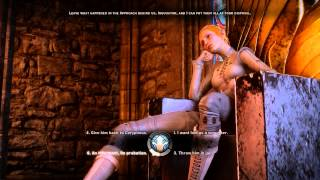 Dragon Age Inquisition - Judge Time (Servis of the Minrathous Circle of Magi)