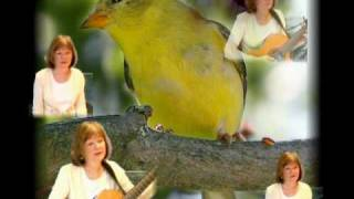 Yellow Bird song, Chris Isaak cover, 3 part harmony