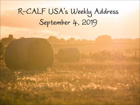 Top Five Issues Facing American Cattle Producers
