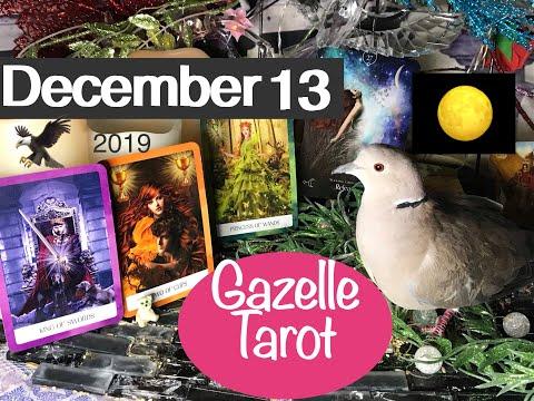 December 13 2019 Daily Tarot Reading 🌝 Release & Soar 🦅 Like Eagle #tarot #tarotreading #tarotreader