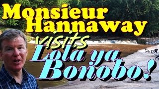 preview picture of video 'Mr Hannaway visits Lola ya Bonobo'