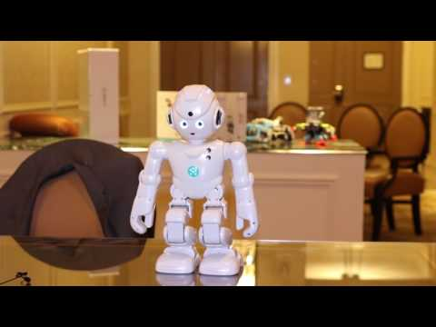 Lynx – Alexa Enabled Smart Humanoid Robot with Facial Recognition-GadgetAny