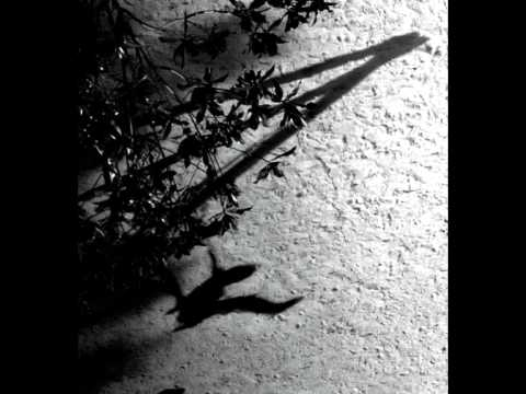 On The Nature Of Daylight (Song) by Max Richter