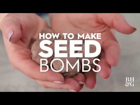 Seed Bombs | Made by Me - Garden | Better Homes & Gardens