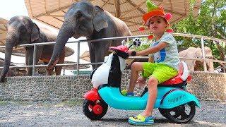 Little Nikita naik dan bermain di Video kebun binatang untuk anak anak
