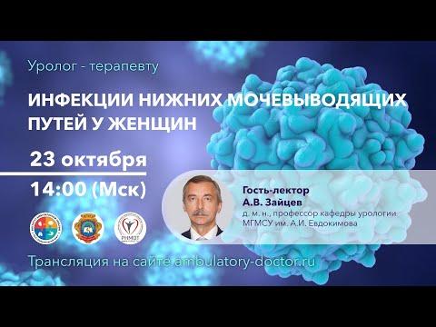 Инфекции нижних мочевыводящих путей у женщин