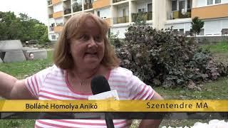 Szentendre Ma / TV Szentendre / 2020.08.04.