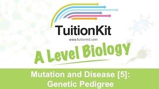 Mutation And Disease [5]: Genetic Pedigree (High Band Biology)