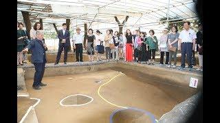 신석기시대 최대, 서울 암사동 유적 발굴