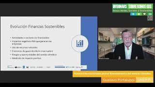 Seminario web 1 - Bonos Objetivos de Desarrollo Sostenible (ODS) /SDG bonds Webinar
