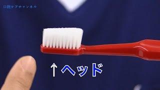 歯ブラシの「わき」「かかと」「つま先」を上手に使ってみがく