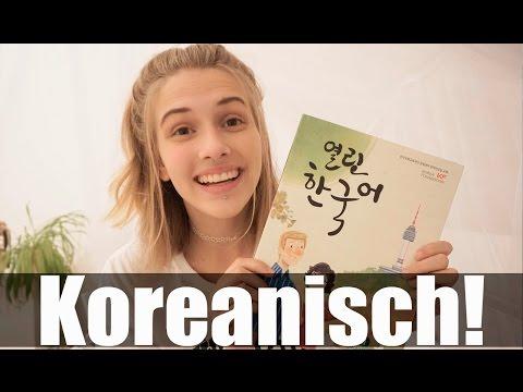 Ich lerne koreanisch? -Tipps zum Sprachen lernen!
