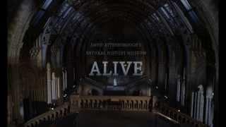 David Attenborough's Natural History Museum Alive Trailer
